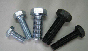 DIN558 Hex Head Bolts Thread Bolt All Grade pictures & photos