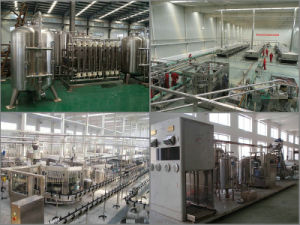 Shjump Customize Blueberry Wine Advanced Processing Line Machinery pictures & photos