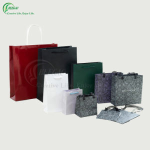 2017 Welcomed Cosmetic Gift Paper Shopping Bag (KG-PB027)