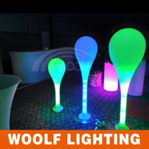 Outdoor LED Light up Decorations Floor Lamps