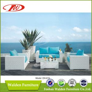 Rattan Outdoor Furniture pictures & photos