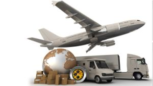 International Air & Logistics Service (DHL UPS FedEx)