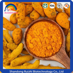 Food Colourants Turmeric Extact Curcumin pictures & photos