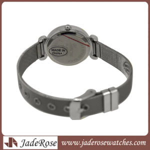 High Quality Fashion Promotion Mesh Band Ladies Alloy Watch pictures & photos