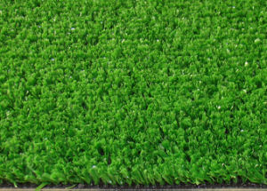 Synthetic Grass (AF0902)