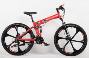 Strong Suspension and Folidng Mountain Bicycle (FP-MTB-A060) pictures & photos