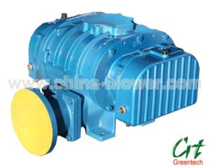 Biogas Roots Blower (3 LOBE) pictures & photos