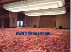 Broadloom Carpet for Hand Tufted Hilton Hotel (Function Hall) pictures & photos
