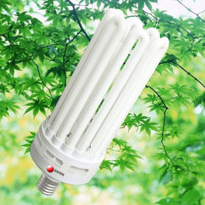 8U Energy Saving Lamp (CFL 8U 01)