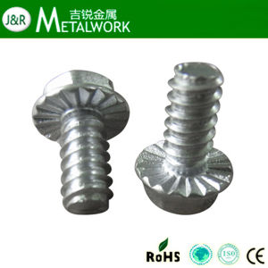 Galvanized Serrated Flange Head Bolt DIN6921 pictures & photos