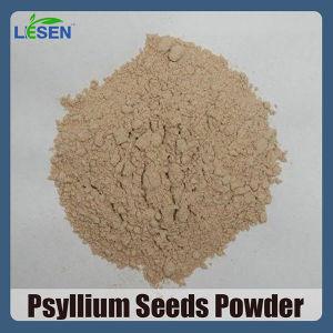 China Iidian Psyllium Seeds Grinded Powder China Psyllium Seed