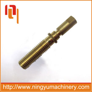 Hot Sale High Quality Spray Brass Furniture Screw pictures & photos