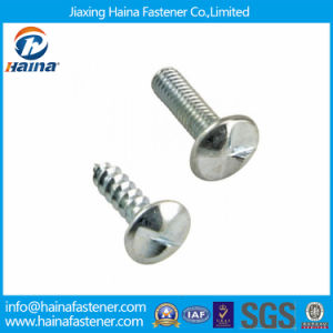 Self-Tapping Anti-Theft Screw with High Quality pictures & photos