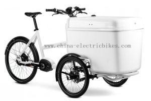 4 Seat Electric Cargo Bikes with Shocks (DT-032) pictures & photos