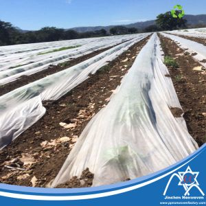 UV Treated PP Nonwoven Fabric for Agriculture Crop Cover pictures & photos