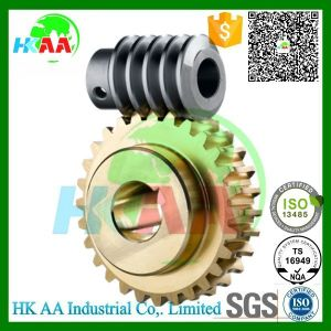 Ts16949 Standard Custom Design Worm Gear Set, Worm Wheel and Worm Gear Shaft pictures & photos