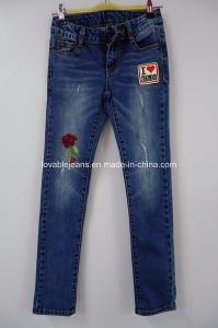 Girls Skinny Embroidered Jeans (R23) pictures & photos