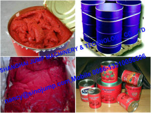 Canned Fruit Jam Filling Line pictures & photos