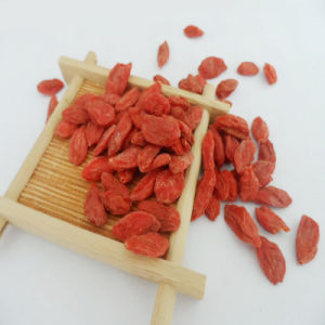 Best Quality Ningxia Dried Goji Berry pictures & photos