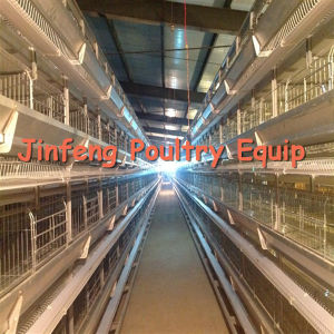 Poultry Equipment for Chicken a H Type Chicken Layer Cages pictures & photos