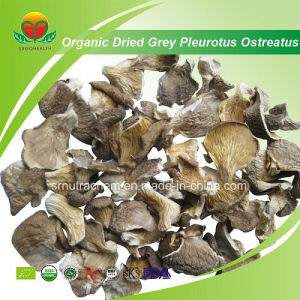 Manufacturer Supplier Organic Dried Grey Oyster Mushroom pictures & photos