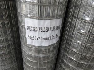 Hot Dipped Galvanized Welded Wire Mesh Fence /Sheet