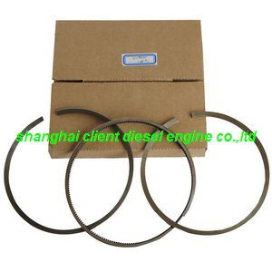 Cummins Diesel Engine Piston Ring Set (2114321) pictures & photos