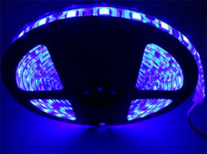 60LEDs IP68 5050 Light LED Flexible Strip pictures & photos