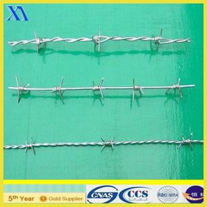 Galvanized Barbed Wire for Security (XA-BW002) pictures & photos