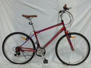 South America Good Quality 18speed Urban Bicycle (FP-CB-051) pictures & photos
