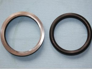 High Auality Mechanical Oil Seal (HF3180) pictures & photos