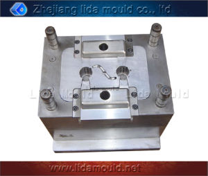 Plastic Injection Mold for Auto Plastic Part (LIDA-A03D)