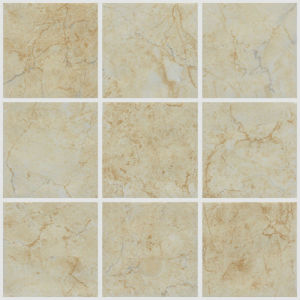 China 300X300mm Glazed Ceramic Tiles Bathroom or Kitchen Floor Tiles