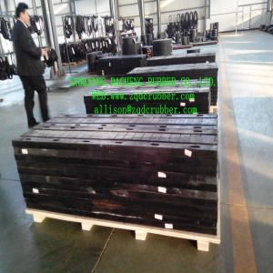 Construction Bridge Expansion Joints (Made in China) pictures & photos