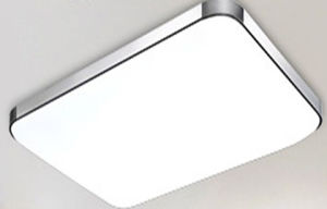 LED Lamps Aluminum Apple Design LED Ceiling Light LED Panel Light Indoor Use pictures & photos