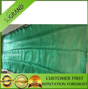 New Material High Quality Green Safety Netting pictures & photos