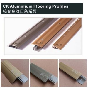 Interior Flooring Building Materials of Aluminum Profile pictures & photos
