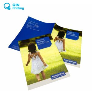 china professional catalogue brochure flyer magazine leaflet booklet