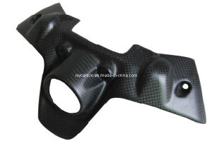 Carbon Ignition Guard for Ducati pictures & photos