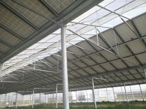 Galvanized Pipe/Tube Used in Greenhouse