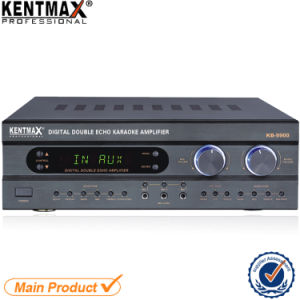 Top Sales 250 Watts Digital Double Echo Power Amplifier China pictures & photos