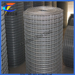 Hot Sales! ! ! Galvanized and PVC Coated Welded Wire Mesh pictures & photos