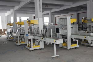 Wrapper Machine (Shrink wrapper) pictures & photos