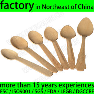 Compostable Eco Friendly Disposable Wood Dessert Spoon