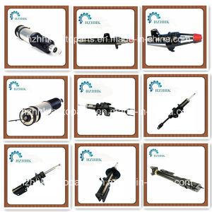 Auto Spare Parts of Shock Absorber for Brand Car