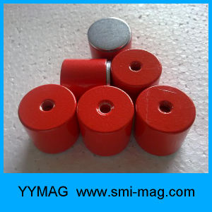 Magnetic Assembly - AlNiCo Pot Red Painted Magnets pictures & photos