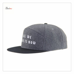 Premium Quality Embroidery Snapback Cap/Baseball Cap/Winter Cap