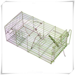 Galvanized Squirrel Trap for Pest Control (V14021)