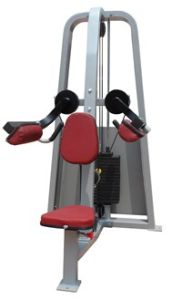 Fitness Equipment / Gym Equipment / Lateral Raise (SW07) pictures & photos