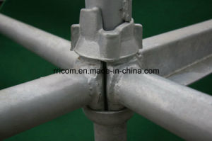 Galvanized Cuplock System Scaffolding for Construction